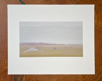 Bull Elk Print
