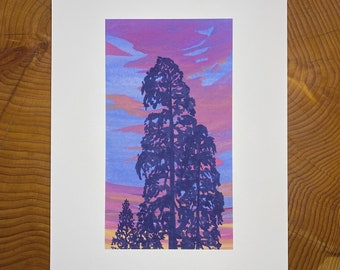 Archival print of Sequoias at Sunset