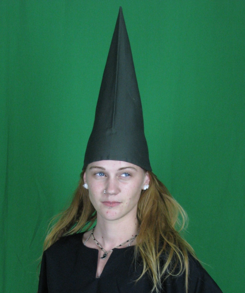 a9c92936d61 Gnome hat dunce cap wizard hat pointy triangle hat many