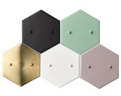 Add a Hexagon Canopy to Any Fixture In Our Shop - (Raw Brass, Sealed Brass, Matte Black, Navy Blue, Matte White, Mint Green, and Mauve Only)