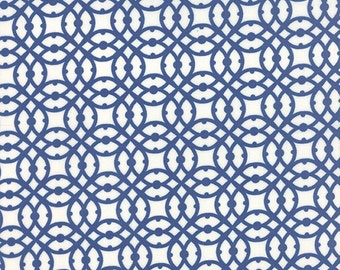 Paradiso by Kate Spain - Destination Lagoon Blue - 1/2yd