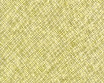 Carolyn Friedlander - Architextures Pickle - 1/2yd