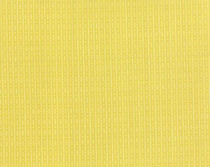 Chic Neutrals Shimmer Gold - 1/2yd