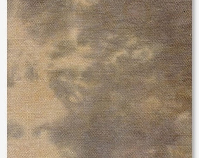 Murky - Picture This Plus 28 count linen