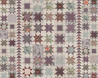 What If You Fly Quilt Pattern - Miss Rosie