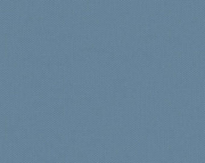 Devonstone Collection Solids - Steel Blue DV119