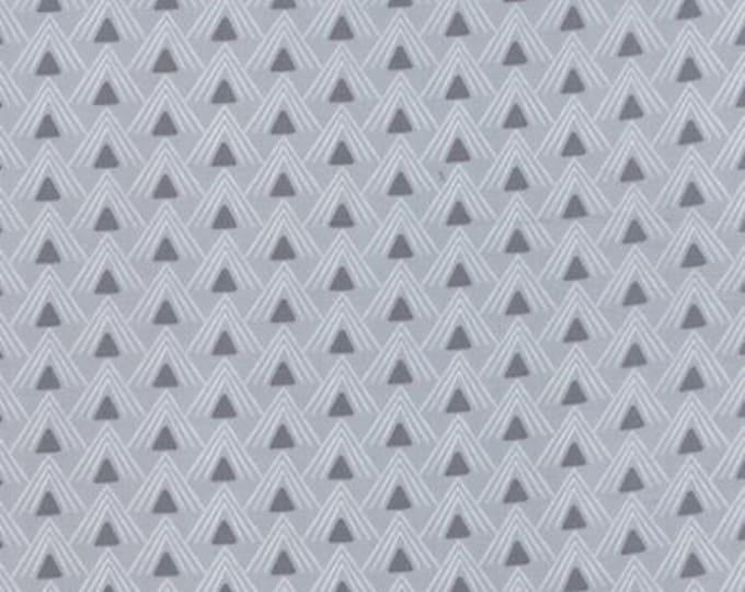 Chic Neutrals Curio Gray - 1/2yd