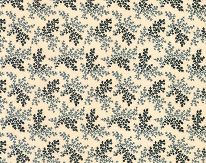 Charlotte by Carrie Quinn 18123199 - 1/2yd