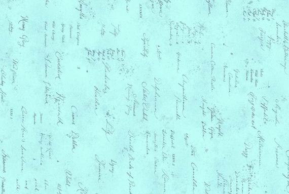 Lecien - Memoire a Paris Quilting Cotton - 82081970 - 1/2 yard