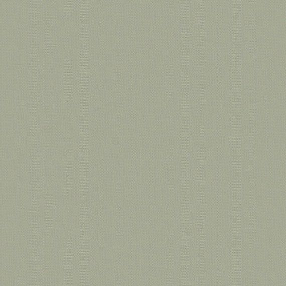 Kaleidoscope Shot Cotton Flax - Alison Glass - 1/2yd