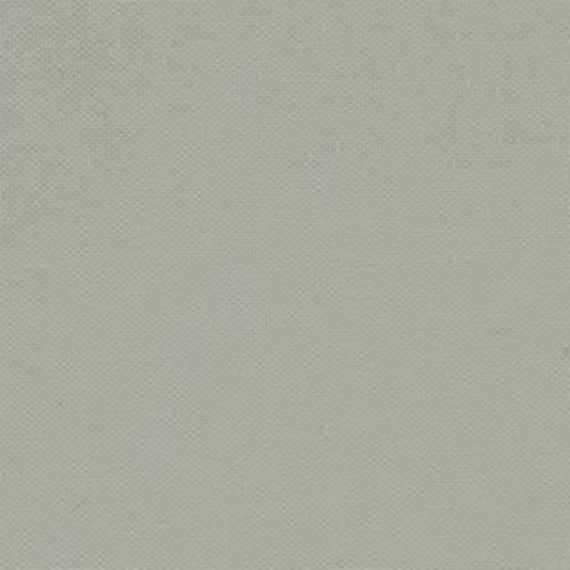 Devonstone Collection Solids - Paperbark DV019