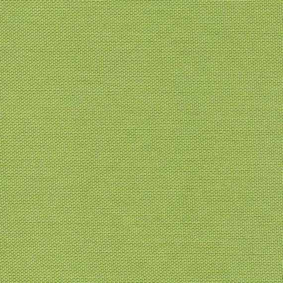 Devonstone Collection Solids - Light Green DV102 - Fat Quarter