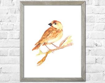 Birds Watercolor Print, Bird Wall Decor, Bird Art, Bird Print, Watercolor Art, Nursery Art