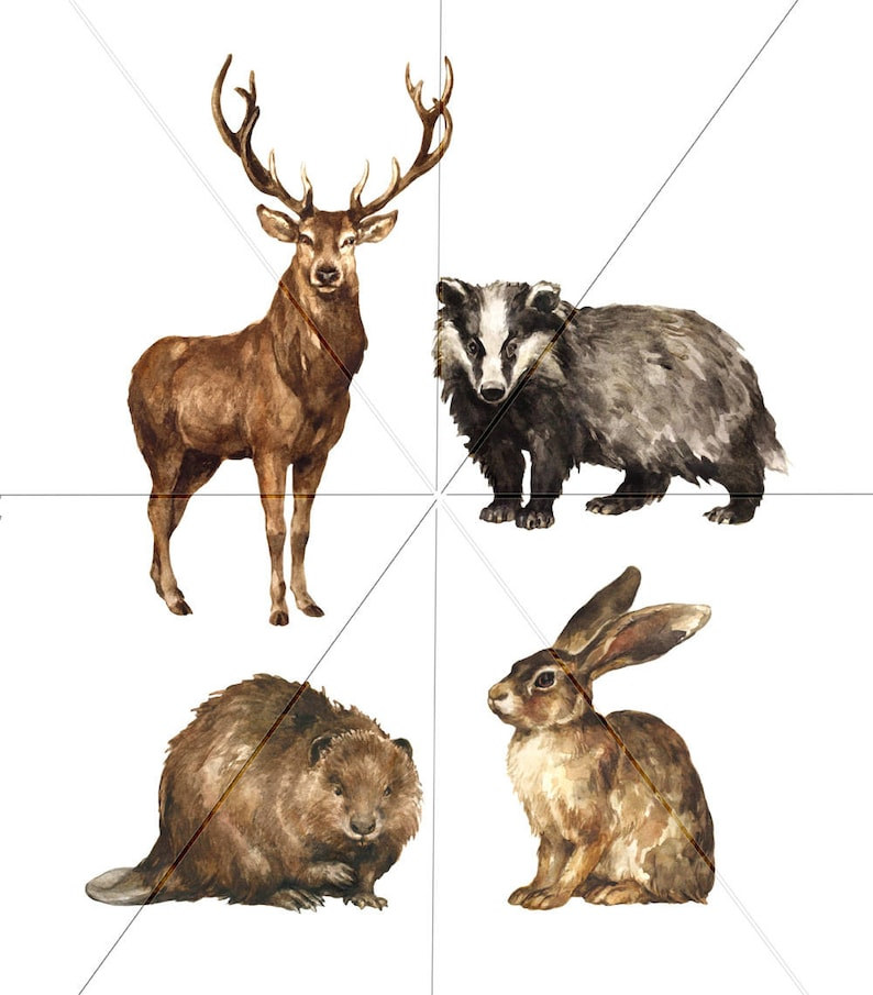 Hand-painted Realistic Stock Illustration Forest animal Clip Art Digital Watercolor Illustration Woodland Animals Clipart Commercial use
