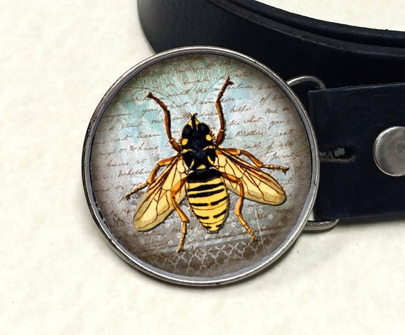 Real insects hornet wasp set in crystal clear resin information card /& gift box