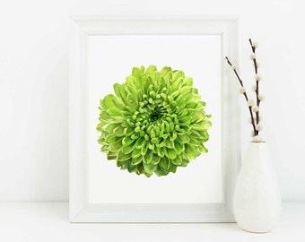 Flower Print Flower Wall Art, Floral Print, Botanical Wall Decor, Flower Illustration, Gift for Gardener, Living Room Wall Art, Gift for Her