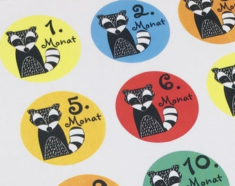 colorful 24 month stickers animal baby milestone stickers
