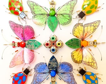 Colour Wheel of Ladybirds and Butterflies, Computer Component Insect Assemblage by Julie Alice Chappell