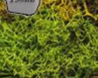 Miniature Basing - Battlefields Essential: Summer Undergrowth (Foilage) (150mL)  - The Army Painter