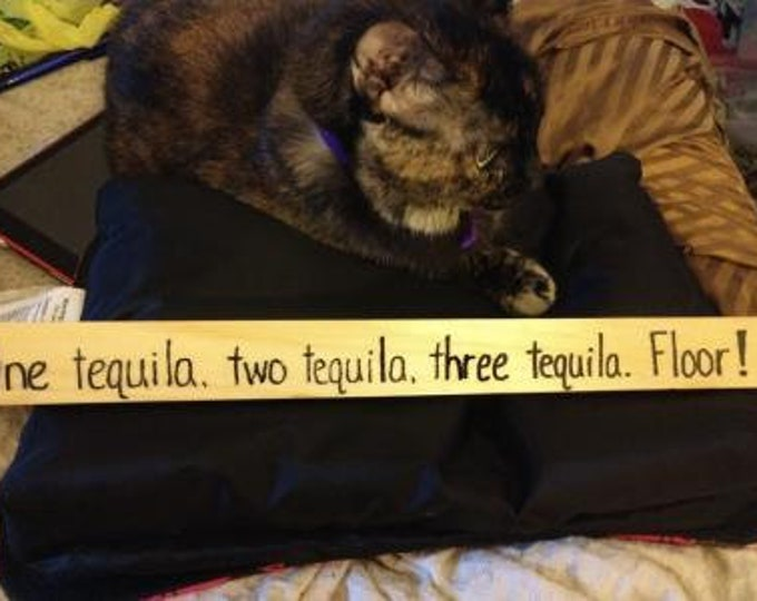 One Tequila, Two Tequila, Three Tequila. Floor! - Hand-Burned Wooden Sign