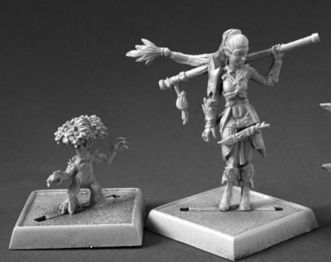 60147: Druid and Familiar - Reaper Miniatures