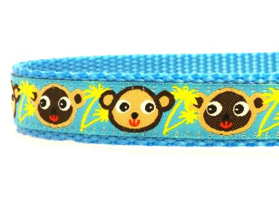 singe bleu collier de chien, chien bleu, col de la jungle, collier ruban