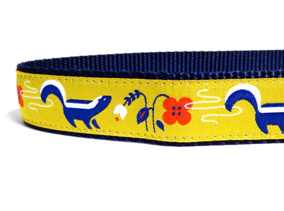 Skunk collier de chien, chien jaune, bleu collier de chien, collier de chien sauvage, ruban chien