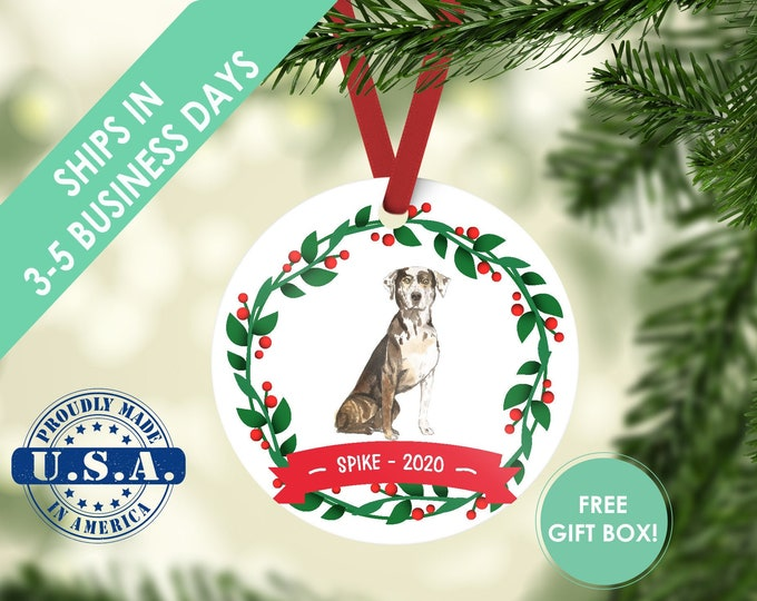 Catahoula Leopard ornament Dog ornament pet ornament custom dog ornament personalized dog dog lover gift dog christmas ornament Leopard Dog