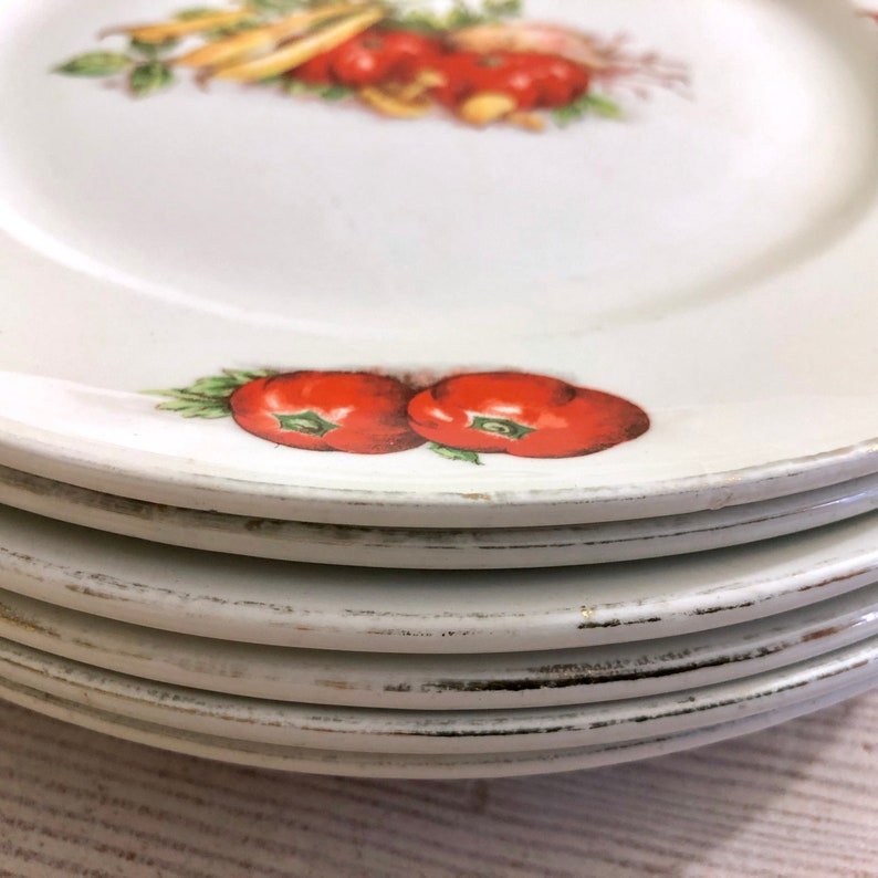 Moulin des Loups vegetable dinnerware Set of six 6 Vintage French dinner plates with vegetable decoration