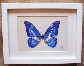Blue Butterfly Painting Amazon Blue Butterfly Print Butterfly Framed Butterfly Illustration Beautiful Blue Butterfly a perfect gift choice.