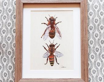 Honey Bee Decor Bee Gift Bee Wallart Bee Painting Bee Print Framed Bee Artwork Honey Bee Illustration Drone Bee and Worker Honey Bee Picture