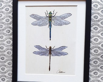 Dragonfly Gift Dragonfly Picture Dragonfly Wallart Dragonfly Decor Perfect Insect Lovers Gift Emperor & Golden Ringed Dragonflies Framed Art