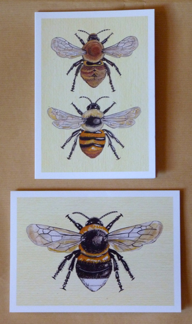 Bee Card   Bee Greeting Cards  Print from original painting. image 0