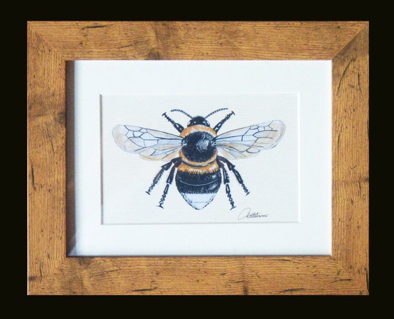 Bumble Bee PictureBee PrintBee painting in Oak effect frame. image 0