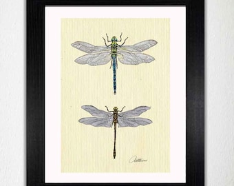Dragonfly Wall Art Dragonfly Painting Dragonfly Artwork Dragonfly Illustration - 'Dragonflies On Canvas' a mixed media combination