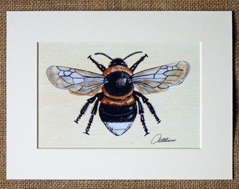 Bumblebee Print Bumblebee Picture Bumblebee to frame Garden Bumble Bee -This image has been chosen time and again it makes a great gift