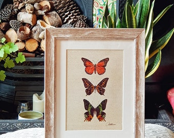 Nature Print Butterfly Print Framed Butterfly Painting Butterfly Wall Art Butterfly Decor Insect Art Print Nature Wallart Nature Lovers Gift