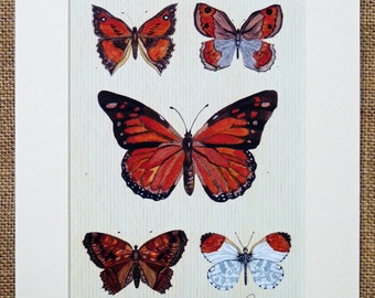 Butterfly print,butterflies picture,butterfly wall decor - unframed,mounted butterfly print. Monarch Five -  A lovely butterfly gift choice!