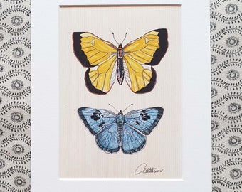 Butterfly Decor Yellow Butterfly Blue Butterfly Butterfly Decoration Butterfly Gift Unisex Nature Gift - Pretty Clouded Yellow & Large Blue