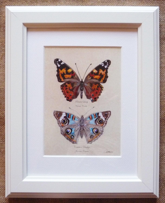Schmetterlinge eingerahmt Butterfly Sammlung | Etsy