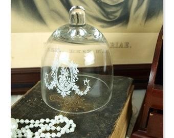 Dome Glas Glocke Glasdom Haube Tortenplatte Shabby Brocante Vintage Nostalgie
