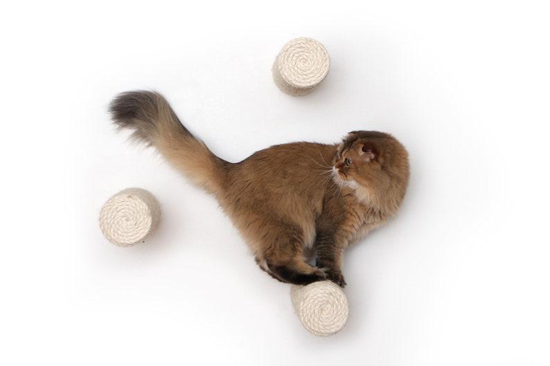 Floating Sisal Post Step Cat Furniture Cat Gift Cat Hammock image 0