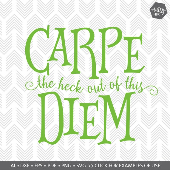 carpe diem quote funny svg new years resolution humorous