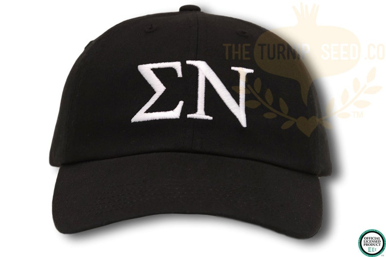 Sigma Nu Baseball Cap  Custom Color Hat and Embroidery. image 0