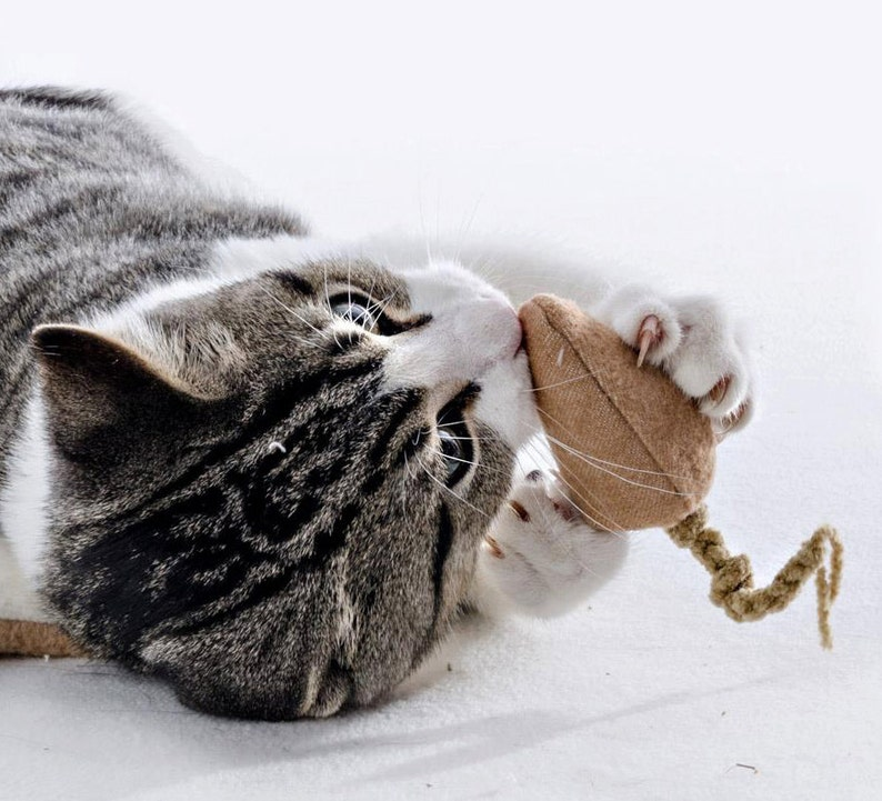 Small Organic Catnip Cat Toy Mouse image 0