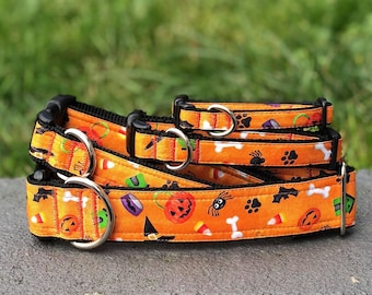 The Everything Halloween Dog and Cat Collar