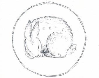 Snug: Rabbit