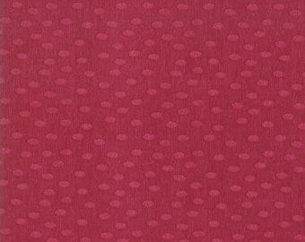 SALE!! 1/2 Yard - Painted Meadow - Dots - Robin Pickens - Moda - Fabric Yardage - 48665 19