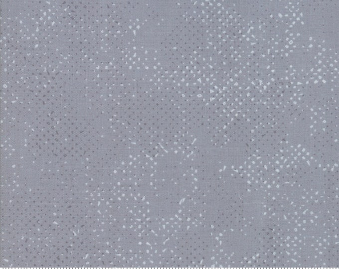 1/2 Yard - Spotted - Steel - Zen Chic - Moda - Fabric Yardage - 1660 52