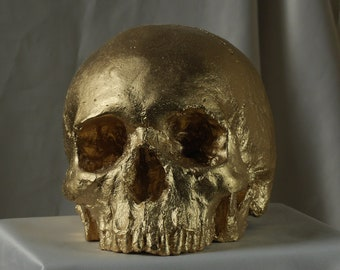HUMAN SKULL REPLICA Gold Finish - full size detailed human skull replica (plaster of Paris) painted gold